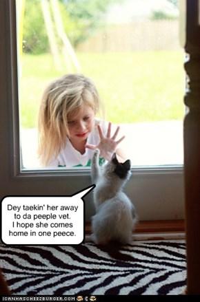 Dey taekin' her away to da peeple vet. I hope she comes home in one peece.