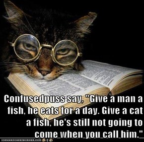 "Confusedpuss say, ""Give a man a fish, he eats for a day. Give a cat a fish, he's still not going to come when you call him."""
