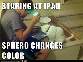 STARING AT IPAD  SPHERO CHANGES COLOR