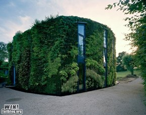 Vertical Garden Home WIN