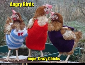 nope; Crazy Chicks