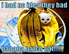 i had no idea they had  banana patch cat!!!!