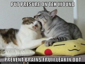 PUT PRESURE ON TEH WOUND