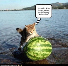 Honestly!  Who throws away a perfectly good watermelon?