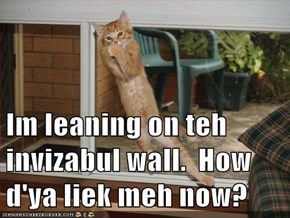 Im leaning on teh invizabul wall.  How d'ya liek meh now?