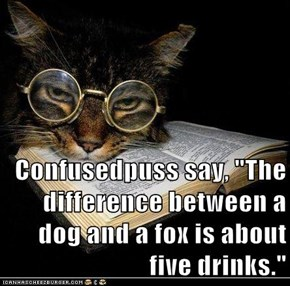 "Confusedpuss say, ""The difference between a dog and a fox is about five drinks."""