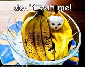 don't eat me!