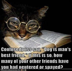 "Confusedpuss say, ""Dog is man's best friend."" If this is so, how many of your other friends have you had neutered or spayed?"