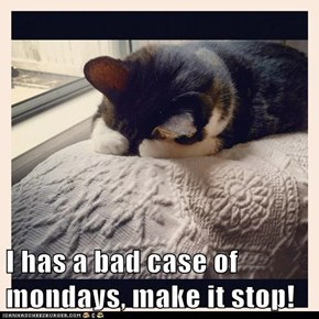 I has a bad case of mondays, make it stop!