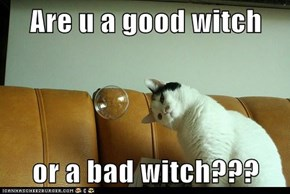 Are u a good witch  or a bad witch???