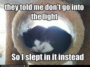 never go into the light