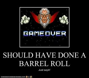 SHOULD HAVE DONE A BARREL ROLL