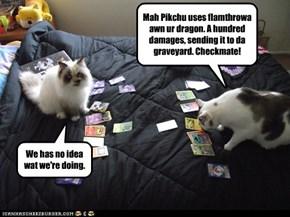 Pokemons iz to compilcatied fur locats.