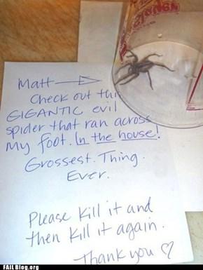 Spider Attack! FAIL