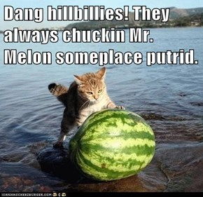 Dang hillbillies! They always chuckin Mr. Melon someplace putrid.
