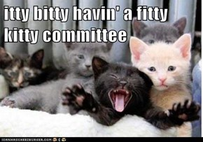 itty bitty havin' a fitty kitty committee