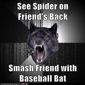 See Spider on Friend's Back  Smash Friend with Baseball Bat