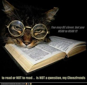 Yoo may BE clever, but yoo NEAD to READ !!!