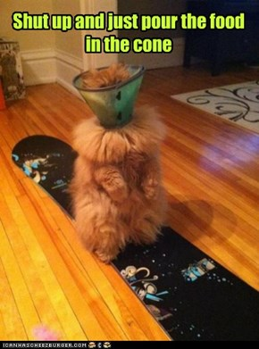 Shut up and just pour the food in the cone