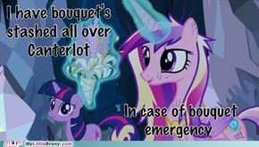 Bouquets stashed all over Canterlot