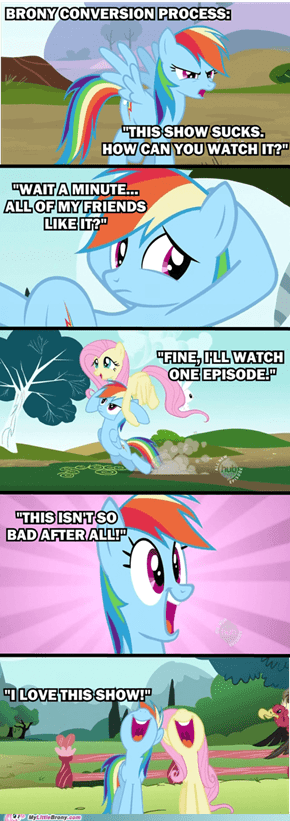 Brony Conversion Process