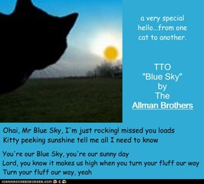 """Mr Blue Sky"" (TTO ""Blue Sky"" by The Allman Brothers)"