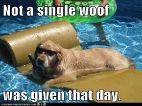 Not a single woof  was given that day.