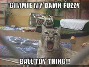 GIMMIE MY DAMN FUZZY   BALL TOY THING!!