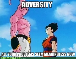 Adversity is merely a stimulus