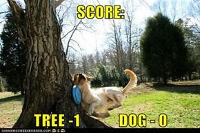 SCORE:  TREE -1            DOG - 0