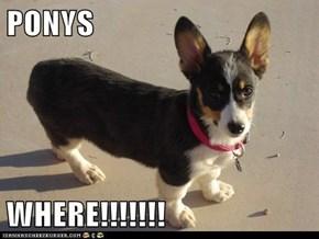 PONYS  WHERE!!!!!!!