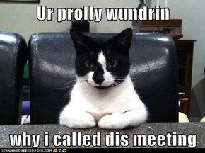 Ur prolly wundrin  why i called dis meeting