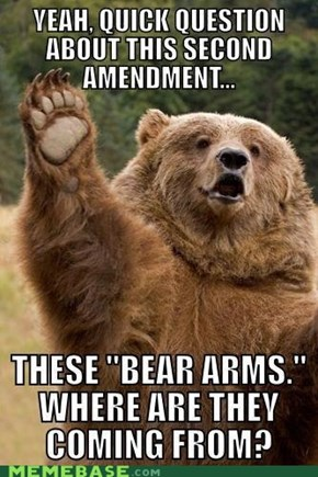 They're Bearly Constitutional