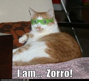 I am...  Zorro!