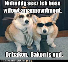 Nubuddy seez teh boss wifowt an appoyntment.