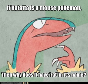 Questioning the PokeDex's Logic