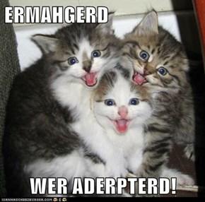 ERMAHGERD  WER ADERPTERD!