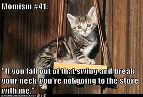 "Momism #41:  ""If you fall out of that swing and break your neck, you're not going to the store with me."""
