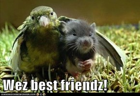 Wez best friendz!