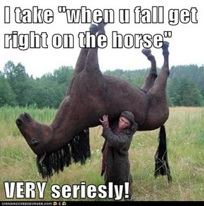 "I take ""when u fall get right on the horse""  VERY seriesly!"