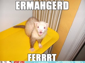 Mah Fravrit Pert