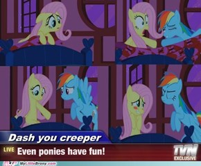 Ponies Just Want To Have Fun