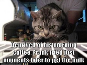Deprived of his morning coffee, Frank tried just moments later to pet the milk