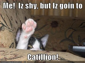 Me!  Iz shy, but Iz goin to  Catillion!