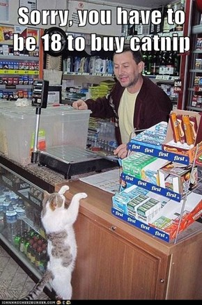 Sorry, you have to be 18 to buy catnip