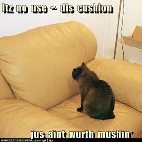 Itz  no  use  ~  dis  cushion            jus  aint  wurth  mushin'