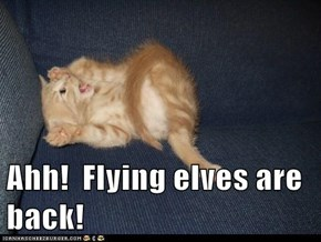Ahh!  Flying elves are back!