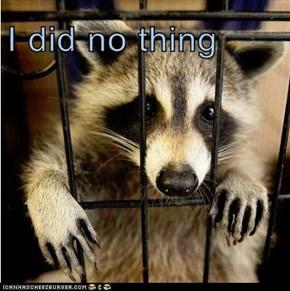 I did no thing