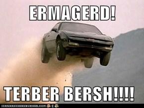 ERMAGERD!  TERBER BERSH!!!!