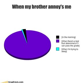 When my brother annoy's me